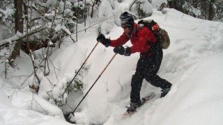 Brooks, even tiny ones can make snowshoeing interesting. Use your poles to stabilize yourself as you approach the crossing, as you step across, and as you climb up the far bank. You don't want ti fall in forwards, backwards or sidewise . . .