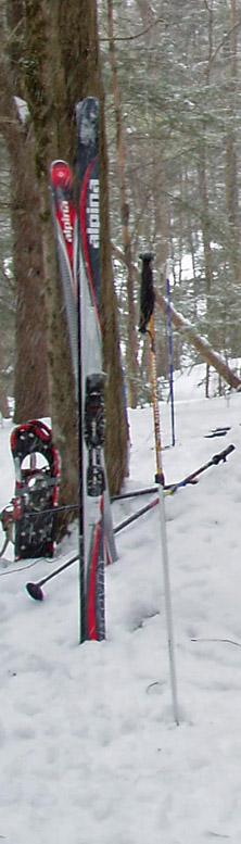 If you are going to have only one pair of cross-country skis to use anywhere, any time . . .