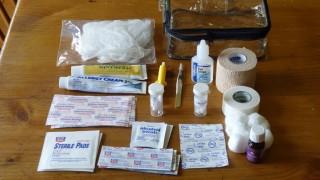 Edie's medical kit (Warner Shedd Photo)