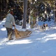 Traveling by dogsled on a guided trip with Mahoosuc Guide Service is an easy, safe, fun, introduction to winter camping.