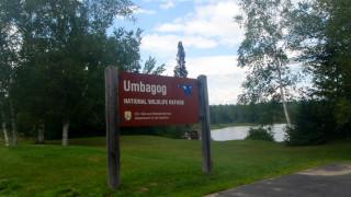 Umbagog sign