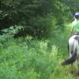 Combining horseback riding with the comfort of a venerable Vermont inn is a recipe for the ultimate outdoor/indoor getaway.