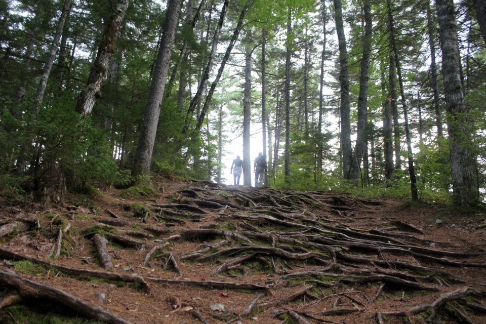 Over six miles of hiking on the Rocky Gorge Trail. And that's just one of the thirty-something trails in the area. (Ron Shpindler photo)