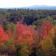 If you are looking for a fall foliage adventure, here's a guide to easy and not-so-easy hikes in Southern New Hampshire.
