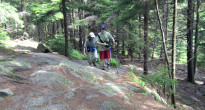 The Wapack Trail climbs North Pack through forest and over sections of rock scramble. (Jonathan Gourlay photo)