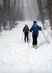 "Skinning up the Gulf of Slides trail in Pinkham Notch, NH. By the time we turned around to ski down, our ""up tracks"" had disappeared under fresh snow. (Tim Jones/EasternSlopes.com)"