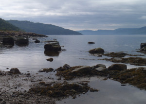 A misty morning following an overnight rain gave us the perfect excuse to relax a little, and a stroll at low tide rewarded us with this view of Saguenay Fjord. (EasternSlopes.com)