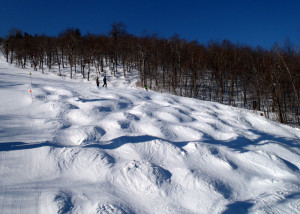 There was something for everyone at Sunapee this morning: lots of snow in the trees, big, pillow-topped bumps, and miles and miles of soft corduory! (EasternSlopes.com)