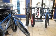 Stan and Dan fatbike rental fleet