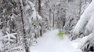 Powder Nirvana awaited on a guided backcountry ski adventure at Le Massif (Le Massif)