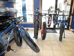 Stan and Dan fatbike rental fleet