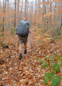 The quiet season after leaves fall is a wonderful time to explore some of New England's Wilderness areas. This is the Basin Trail heading into the Wild River Wilderness. One note of caution: trail in Wilderness Areas aren't always this easy to follow. (EasternSlopes.com photo)
