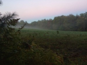 This was my view at dawn. (photo by Deborah Lee Luskin/easternslopes.com)